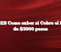 ANSES  Como saber si Cobro el Bono de $5000 pesos