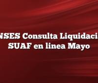 ANSES Consulta Liquidacion SUAF en linea Mayo