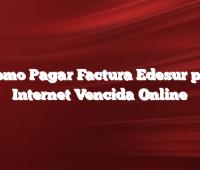 Como Pagar Factura Edesur por Internet  Vencida Online