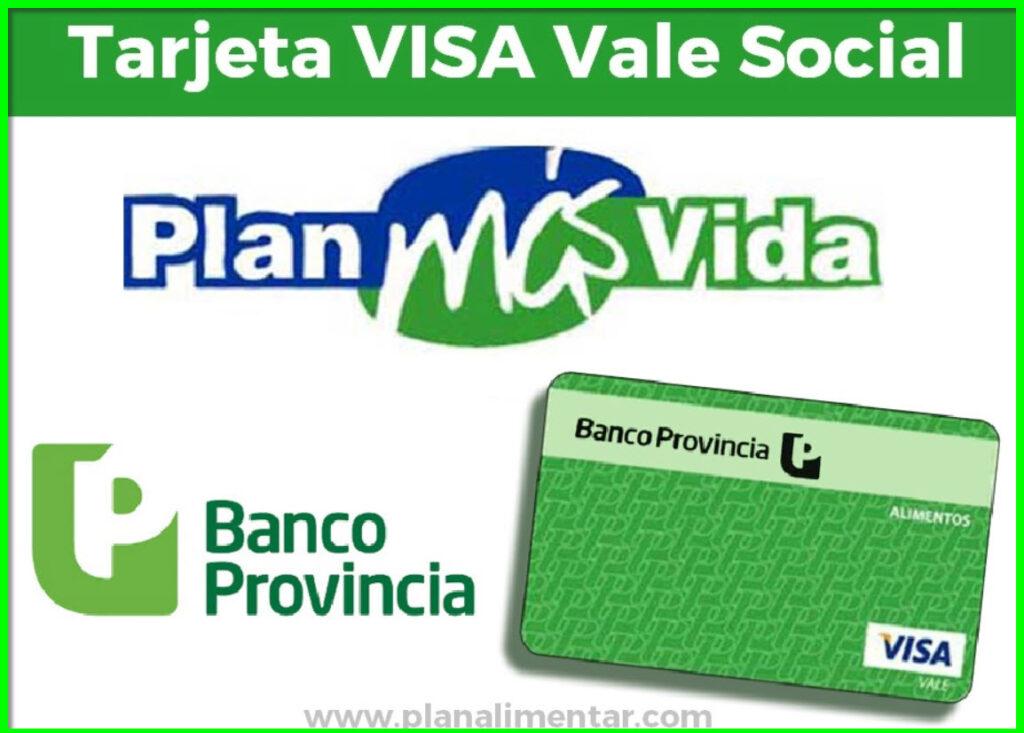 Cómo consultar el saldo de tu tarjeta VISA Vale alimentos en Argentina