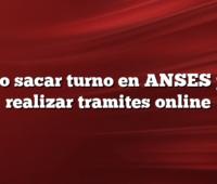Como sacar turno en ANSES para realizar tramites online