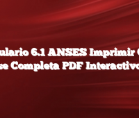 Formulario 6.1 ANSES  Imprimir Como se Completa  PDF Interactivo