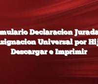 Formulario Declaracion Jurada de Asignacion Universal por Hijo  Descargar e Imprimir
