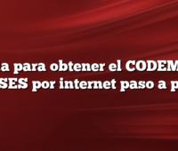 Guia para obtener el CODEM en ANSES por internet paso a paso