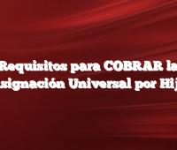 Requisitos para COBRAR la Asignación Universal por Hijo
