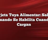 Tarjeta Tuya Alimentar: Saldo, Cuando Se Habilita Cuando Cargan