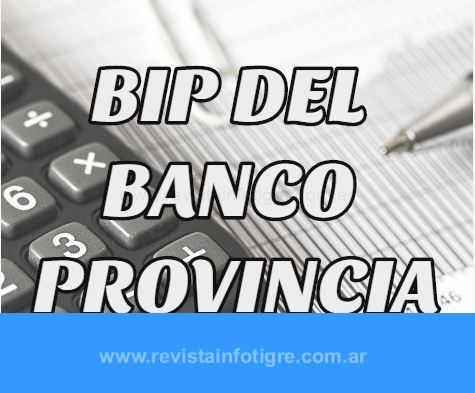 ¿Cómo Ser Bip en Banco Provincia?
